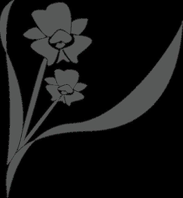 Dibujo de una flor