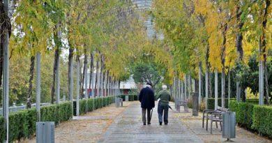 dos hombres paseando por el parque