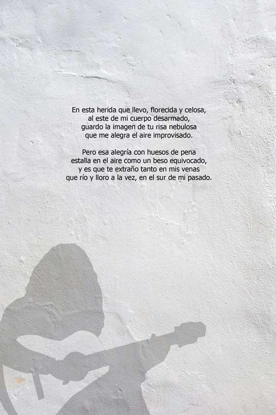 Contraportada del poemario de Felipe Espílez Murciano Al sur de los suspiros