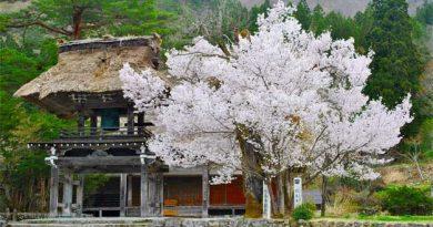 Casa en Japón