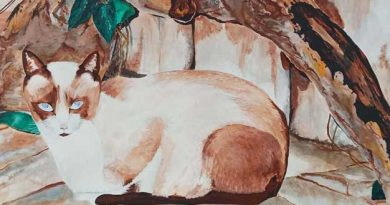 """Detalle cuadro Emilio Poussa titulado """"Un gato"""" Acuarela sobre papel"""