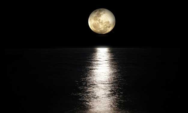 La senda del amor de la luna incesante
