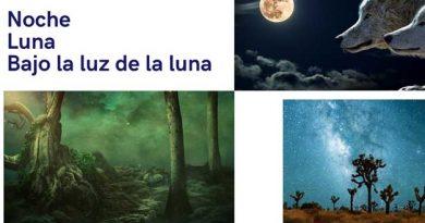 tríptico de fotos de la noche y la luna