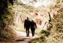 Abuelos paseando