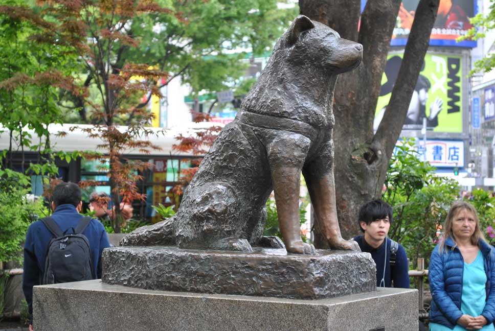 Hachiko, en Shibuya, Tokio