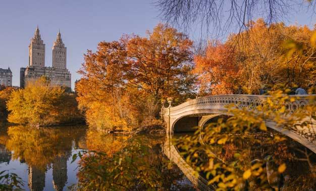 Puente en New York