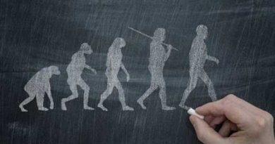 simio evolucionando a hombre